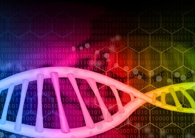 ENTAP: 非モデル生物のトランスクリプトームからアノテーション情報を追加する